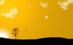 Picture leaves, tree, orange, sky