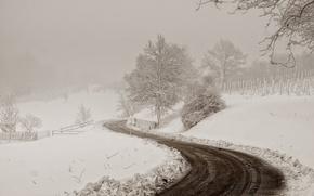 Picture winter, road, snow, landscape