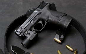 Picture gun, cartridges, Smith & Wesson, United States of America, M&P, Military and Police