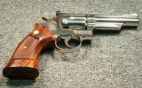 Picture gun, weapons, SW19 Nickel