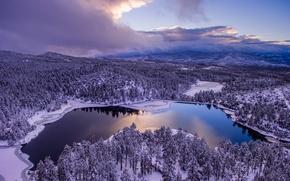 Picture winter, forest, the sky, clouds, trees, lake, panorama, AZ, Arizona, Prescott, Prescott, lake Goldwater, Goldwater …