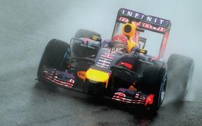 Picture Racer, Japan, Formula 1, Rain, Sebastian Vettel, Champion
