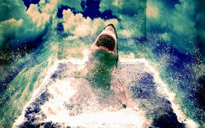 Picture sea, wave, water, clouds, Shark, White shark