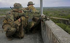 Picture roof, optics, sniper, rifle, equipment, sniper