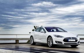 Picture Model, White, Tesla