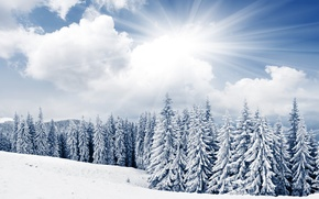 Picture winter, the sky, the sun, clouds, snow, trees, mountains, ate, tree
