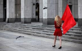 Wallpaper star, Girl, flag, pigeons, gray tones