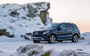 Picture Mercedes-Benz, Mercedes, 4MATIC, 2015, W166, GLE-class