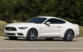 """Picture Mustang, 2015, """"50"""
