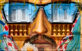 Picture wall, graffiti, window, nose, mouth, flower art, whiskers, glasses Sun, artistic