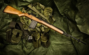 Picture weapons, bag, rifle, M14, semi-automatic