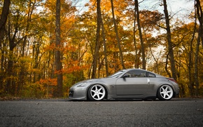 Picture grey, tuning, nissan, profile, 350z, Nissan, tuning, stance