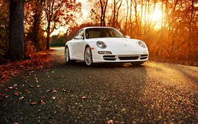 Wallpaper Porsche 911 Carrera S, white, 911, Porsche, autumn