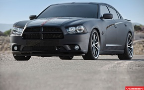 Picture dodge, charger, vossen