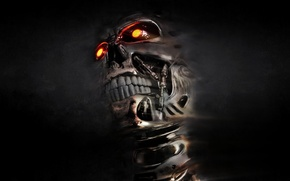 Picture skull, terminator, cyborg