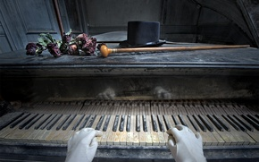 Picture flowers, music, piano