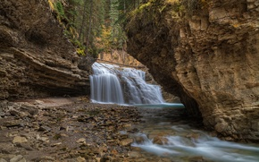Picture trees, mountains, river, rocks, waterfall, stream
