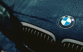 Picture drops, bmw, logo, the hood, grille, drop