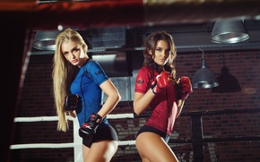 Picture pose, girls, sport, two, brunette, blonde, Boxing, gloves, shorts, the ring, ropes, figure, stand, sports, …