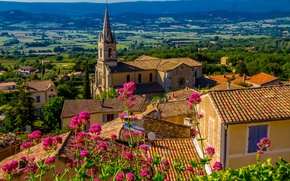 Picture summer, the sun, trees, flowers, mountains, France, field, home, roof, Bonnieux