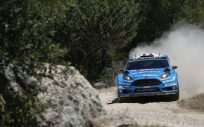 Picture Ford, Ford, WRC, Fiesta, The front