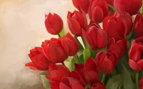 Picture background, bouquet, art, tulips, red
