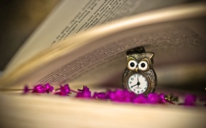 Picture flowers, owl, watch, pendant, book, page, lilac