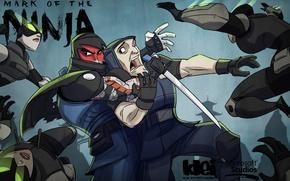 Picture game, the game, Ninja, Mark of the ninja