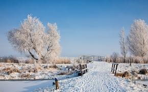 Picture winter, snow, landscape, bridge