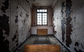 Wallpaper room, bed, window