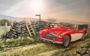 Picture road, machine, figure, Roadster, painting, classic, Austin Healey