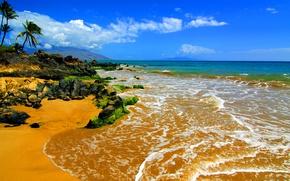 Picture beach, stones, palm trees, the ocean, Hawaii, Maui, Big Beach