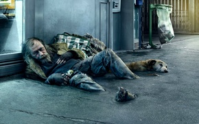 Wallpaper dog, street, homeless, beggar, people