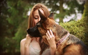 Picture girl, dog, pet, German Shepherd