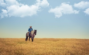 Picture field, the sky, clouds, horse, cowboy, farm, the countryside