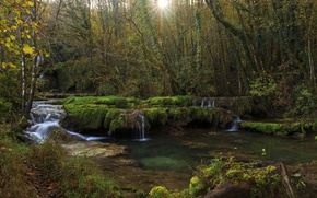 Picture forest, trees, stream, France, waterfall, the rays of the sun, Jura, Franche-Comte
