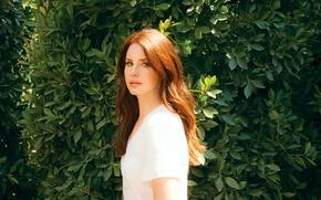 Picture leaves, girl, background, hair, singer, red, long, Lana Del Rey, Lana Del Rey, Elizabeth Woolridge …