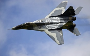 Picture weapons, the plane, Polish MiG-29