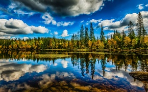 Picture forest, the sky, clouds, trees, lake, reflection, HDR, Norway