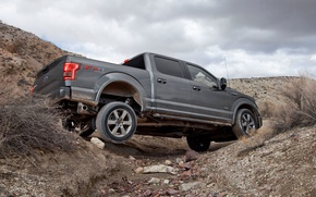 Picture desert, Ford, Shelby, Raptor, Low, F-150