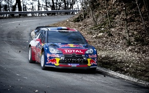 Picture Auto, Road, Autumn, Citroen, Citroen, Red Bull, DS3, WRC, Rally, Rally