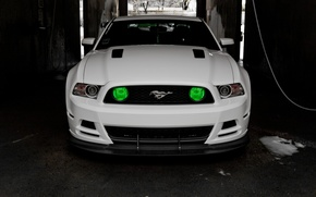 Picture Mustang, Ford, GT500, Mustang, Ford, 5.0, white. before
