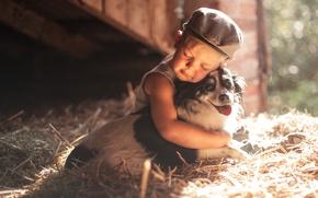 Picture dog, boy, friendship, hay, cap, friends