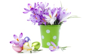 Picture eggs, bouquet, crocuses, bucket, flowers, spring, eggs, easter, crocus