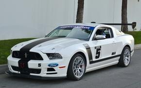 Picture Mustang, 302, Boss, Corner