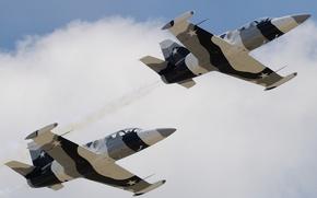"""Picture flight, the plane, """"Albatross"""", Albatros, combat training, Aero L-39"""