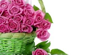 Wallpaper flowers, basket, roses, bouquet, pink, basket, beautiful