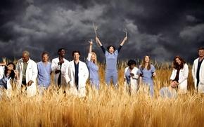 Picture joy, Katherine Heigl, actors, Grey's Anatomy, Grey's anatomy, Ellen Pompeo, Isaiah Washington, Sara Ramirez, James ...