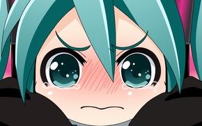 Picture girl, vector, vector, anime, art, vocaloid, hatsune miku