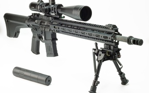 Picture weapons, optics, rifle, carabiner, assault, Tactical, fry, semi-automatic